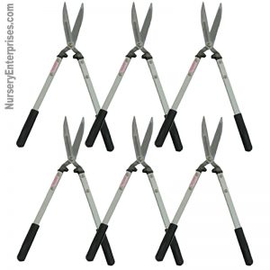 Hedge Shears Bundle of 6 | Nursery Enterprises