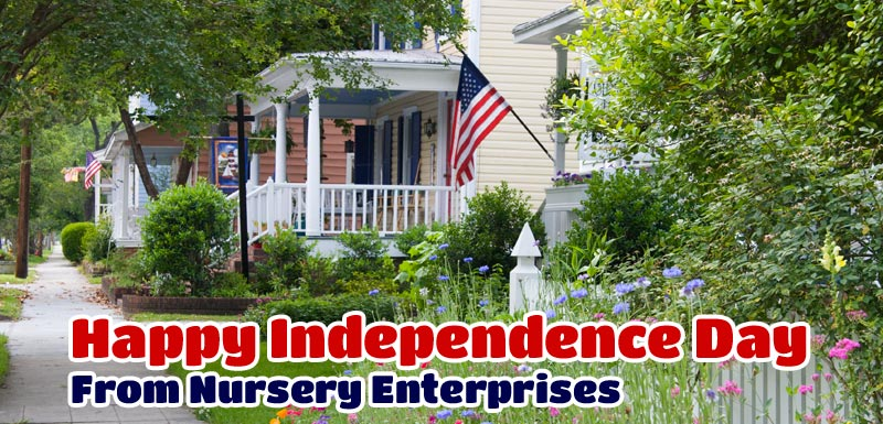 Independence Day Gardening