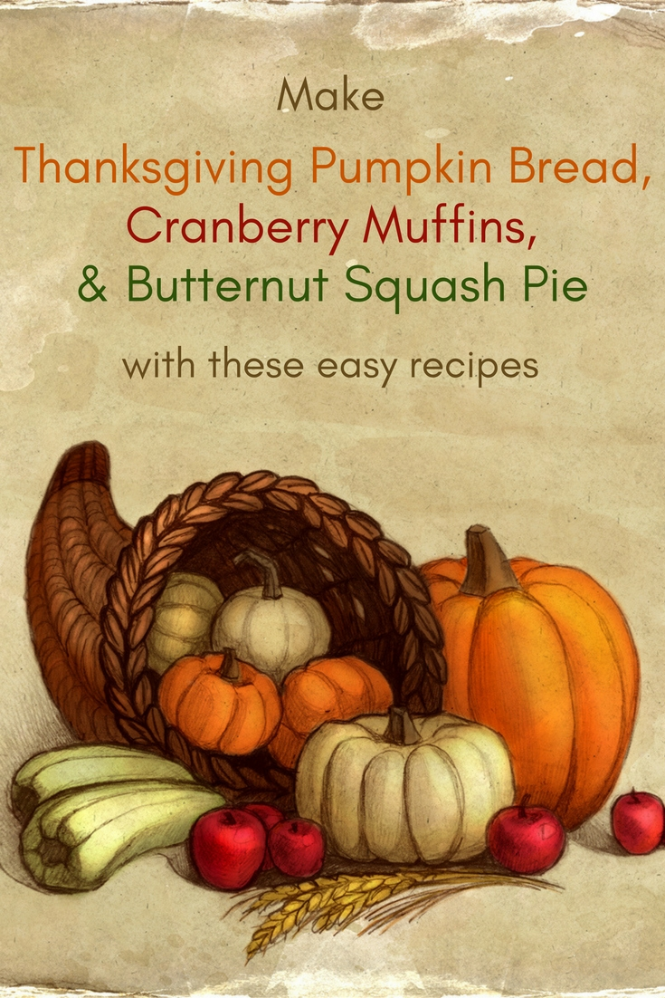 Make Thanksgiving Pumpkin Bread, Cranberry Muffins, & Butternut Squash Pie Recipes