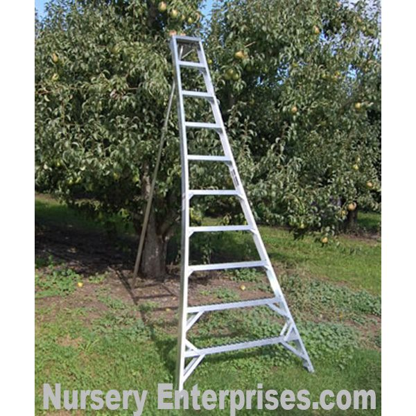 Tripod Ladders - tripod ladder 10 foot