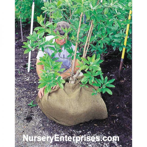 Burlap Roll 4' x 100' | Nursery Enterprises