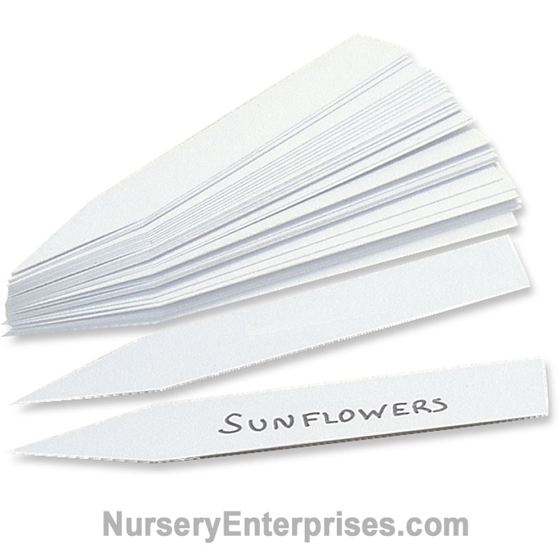 "Plastic Plant Labels - 3/4"" x 4"" 