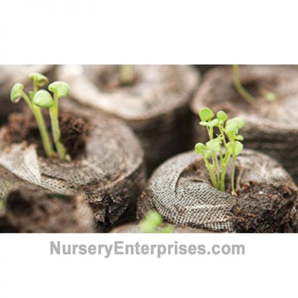 Peat Pellets great for Seeds and Cuttings | Nursery Enterprises