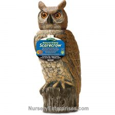 Owl Scarecrow With Rotating Head | Nursery Enterprises