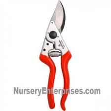 Corona BP 6360 | Nursery Enterprises